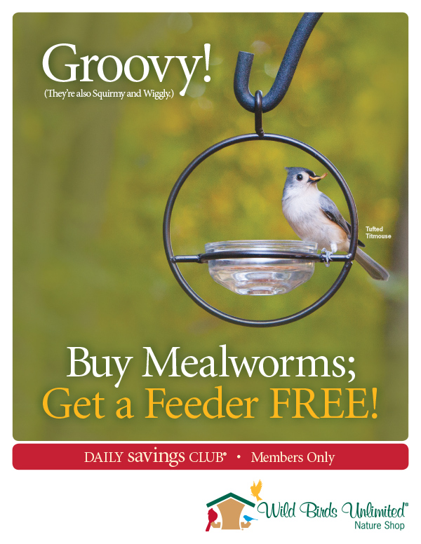 http://wbuintranet.com/sites/default/files/_fscstaff/marketing/planner/2015/signs/8.5x11/Sign_8.5x11_2015_05MAY_Mealworms_and_Feeder_DSC.jpg